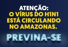 Vírus H1N1, Previna-se!